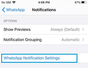 WhatsApp Notifications Settings Tab on iPhone