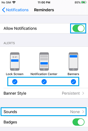 Notification Settings For Reminders on iPhone
