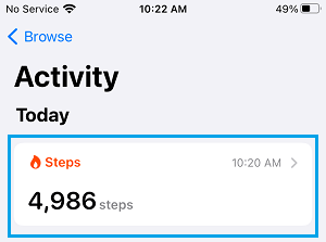 Steps Tab on iPhone Health App