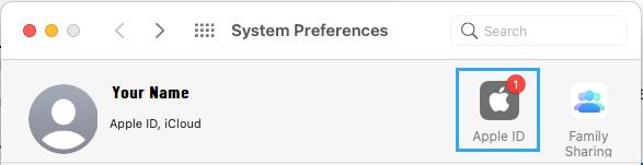 Apple ID Settings Option on Mac