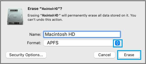 Select APFS Format