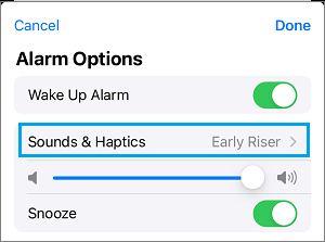 Sound & Hepatics Settings Option on iPhone