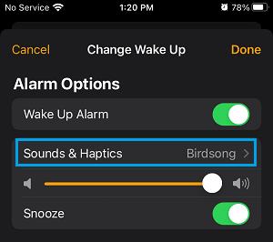 Sounds & Hepatics Settings Option in iPhone Clock App
