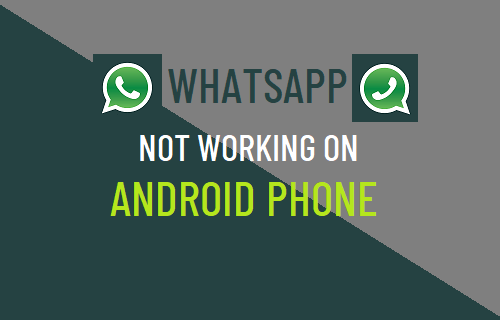 WhatsApp Not Working on Android Phone